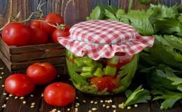 Des recettes étonnantes de tomates au céleri pour l'hiver
