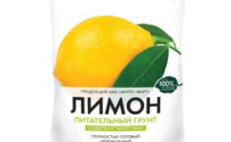 Terrain pour la culture du citron à la maison