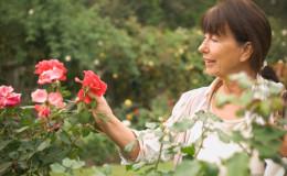 Nous prenons soin des roses dans le jardin en été pour qu'elles fleurissent abondamment et pendant longtemps